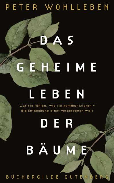 Wohllleben_Das_geheime_Leben_der_Baeume_2